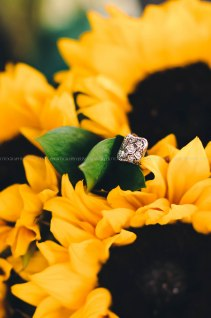 Wedding Photography Portland Oregon-563